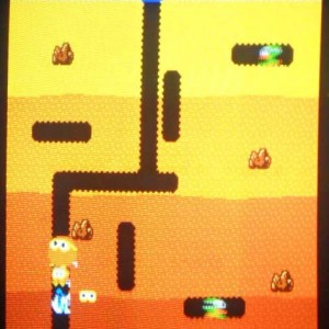Dig Dug Screen