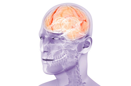 Illustration of a brain inside of a man's head