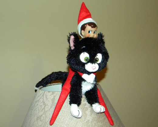 Elf on the Shelf Holding Kitty Hostage